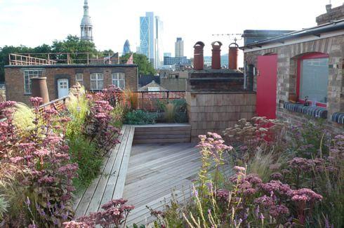 Roof terrace with planting in soft pink and russet colours: Sedum 'Matrona', Stipa tenuissima, Aquilegias, Penstemon 'Garnet', Linaria purpurea, Achillea Cerise Queen, Gaura lindheimeri