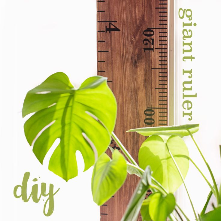 Giant Ruler DIY, how to measure your kids!   Little Acorns by Ro kit.