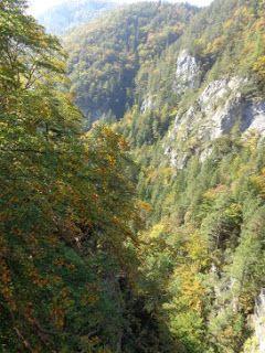 LacnýEshop Blog: Spestrite si jeseň.