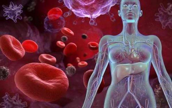 Anemia – Le  vere cause emotive ed alimentari