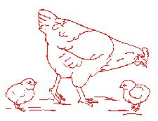 Redwork Embroidery Patterns - Farm Animals; Rabbit, Chickens, Rooster, and Cow