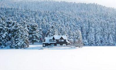 Karlar Altında Gölcük, Abant Gezi  2016  Kış döneminde beyaz örtüyle bambaşka bir güzelliğe bürünen Gölcük' te göl çevresinde keyifli zor olmayan kısa bir yürüyüş, Abant`ta mangal partisi ve sıcak şarap ikramı. Bu fırsat kaçmaz. Tur detayları http://www.tempotur.com.tr/KARLAR-ALTINDA-GOLCUK--ABANT-GEZISI_u_r_n_38097.htm#.VMtVHWisWGs adresinde.