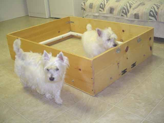 how to make a whelping box for german shepherd