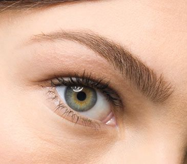 How to groom eyebrows without looking plucked, waxed, and penciled in.