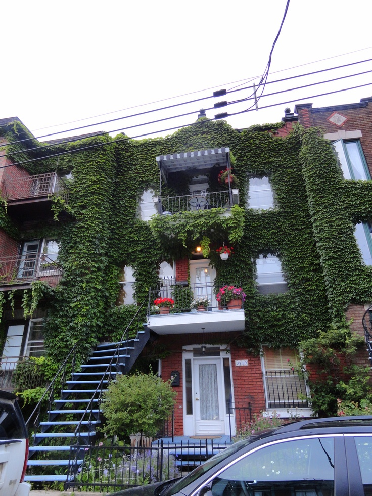 246 Best Images About Balcony Gardens On Pinterest