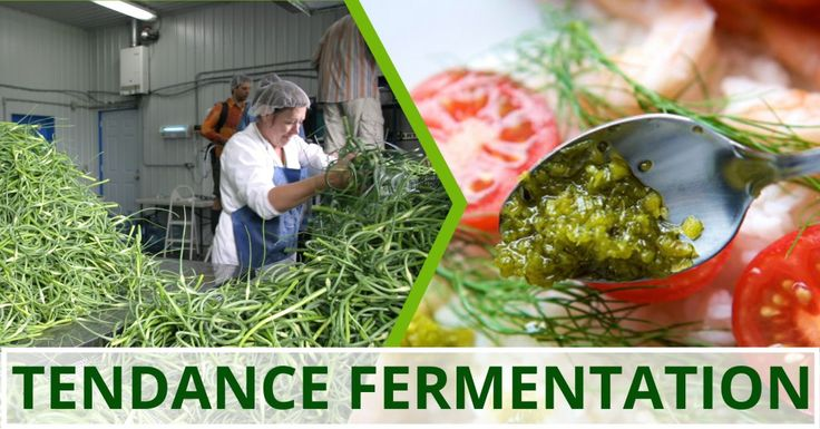 Saviez-vous que la fermentation lactique permet de maintenir la teneur en vitamines et nutriments des aliments frais? Profitez des nombreux avantages de la fermentation lactique en consommant nos délicieuses fleurs d'ail fermentées!