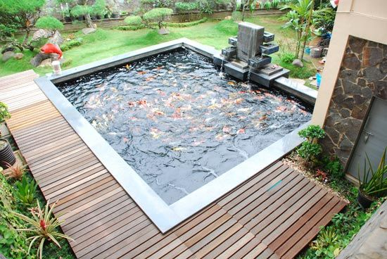 Koi fish pond in the big backyard