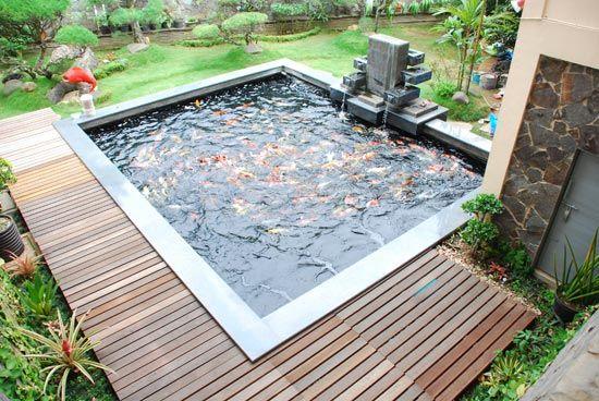 Koi fish pond in the big backyard