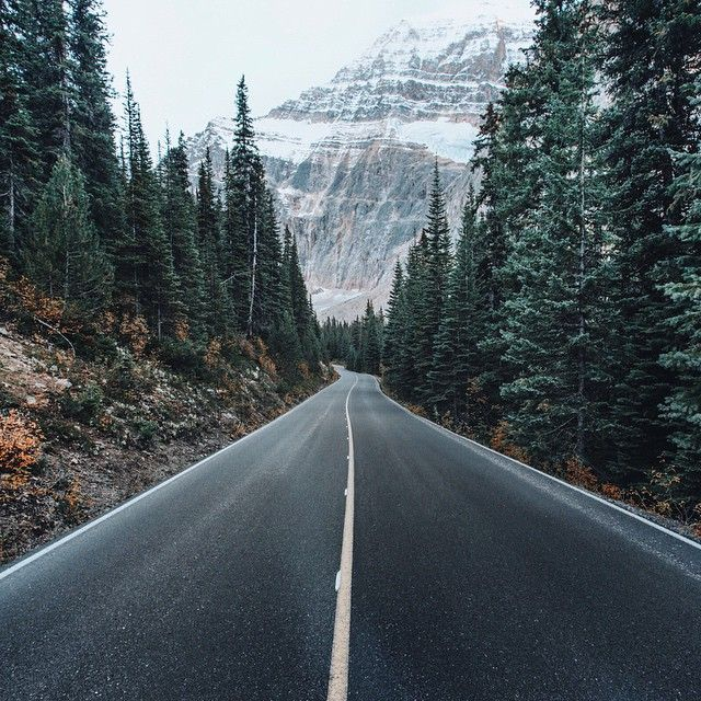 One of the things I love most about the Pacific Northwest - long, winding roads surrounded by gorgeous trees and mountains.