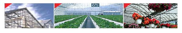 F-CLEAN® Greenhouse Film A thin ETFE film, F-CLEAN® Greenhouse Film is the preferred covering material for horticultural greenhouses  Light transmittance up to 94% Translucent to ultraviolet light Anti-dripping and self-cleaning properties Very high reflection and refraction rates High tensile strength compared to other plastic films Low degradation from sunlight and heat (more than 25 years without any deterioration)