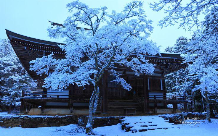 京都  冬の神護寺。