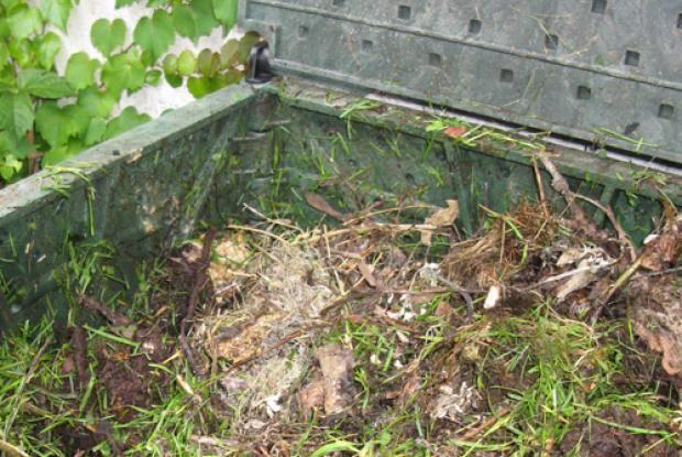 Les amendements organiques | Paillis, terre noire, tourbe de sphaigne, compost, fumier. Espace pour la vie