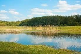 Risultati immagini per corsi d'acqua di campagna