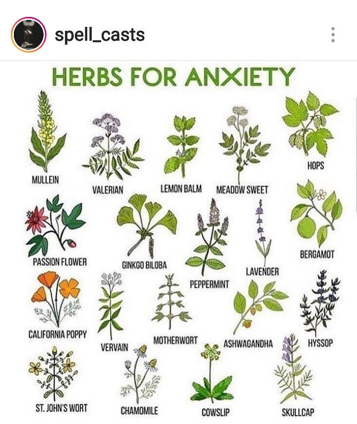 Pin by olivia swetel on spiritual shit | Wicca herbs, Witch herbs