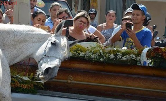 Cavalo comove família de vaqueiro morto ao 'se despedir' do dono na PB.