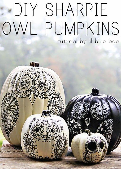 Sharpie owl pumpkins