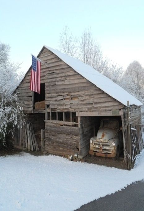 Flag in the winter