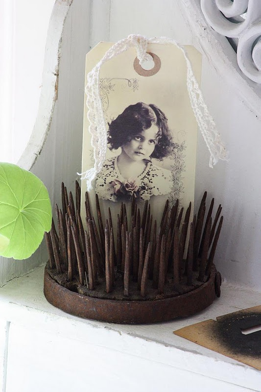 display for old photos and old postcards - Rusty frog