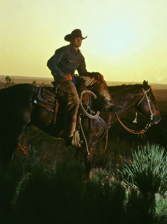 Real Cowboys Learn To Take Photos Of Real Cowboys Like