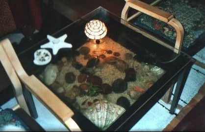 The first ever table top aquarium, designed by me, and a tv for our cat. Made from a €5  black plastic flower stand, based filed with sea sand, rocks, shells, stones, and mainly goldfish, our cat would spend hours on the clear acrylic sheet watch the fish! Fitted with a good filter and air circulating system, it sat next to our tv chairs!