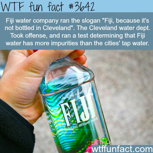 Why you shouldn't waste your money on Fiji water - WTF fun facts