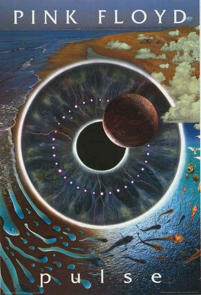 Pink Floyd Pulse Poster 24x36 – BananaRoad
