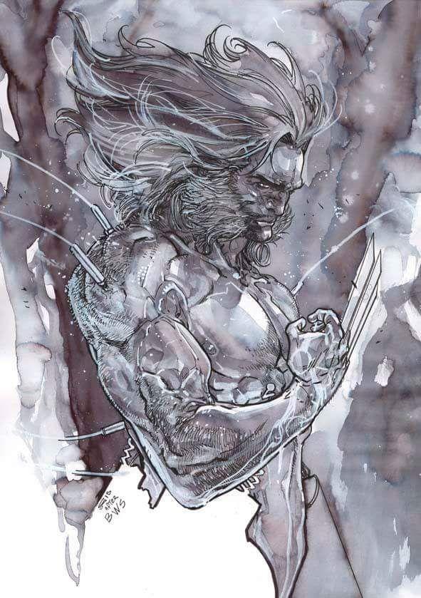 Wolverine by Carmine Di Giandomenico