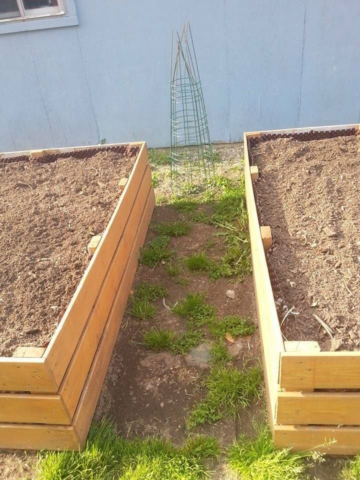 "Raised garden boxes are made of 5' and 6' fence boards. They are lined with dimple basement wrap. This keeps the boards from being in constant contact with moist soil. And when the do get wet it allows the air to dry out the boards. They've gone through three seasons now and have held up great to severe winters and rainfall. There are no bottoms in these. The 2x4's are used to not only attach all the boards to. But are 12""s longer with points cut into them. This acts as an anchor."