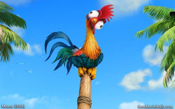 #HeiHei Is The World's Dumbest Chicken :] #Moana's