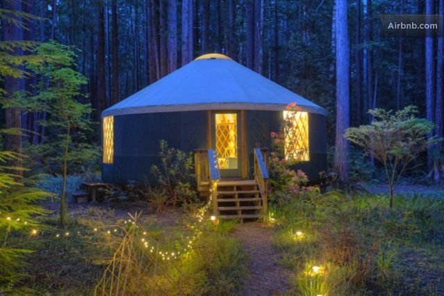 In the California redwoods: 27' across.: Art Therapy, Yurts Camps, Yurtart Studiopiano, Tiny Houses, Yurts Art Studios Piano, Art Center, Creative Art, Art Supplies, Retreat Spaces