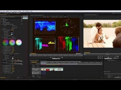 How to Color Correct Video... overall definitions and very short explanations.  At 7:00 it discusses (briefly) secondary color corrections to effect only one color within a portion of the frame.