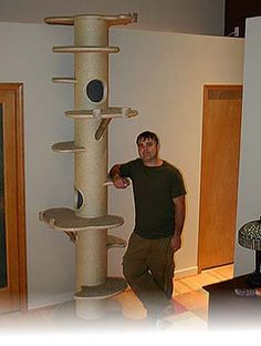 cat tree made from concrete tubes - Google Search