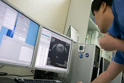 Найден способ избавиться от воспоминаний: Наука: Наука и техника: Lenta.ru