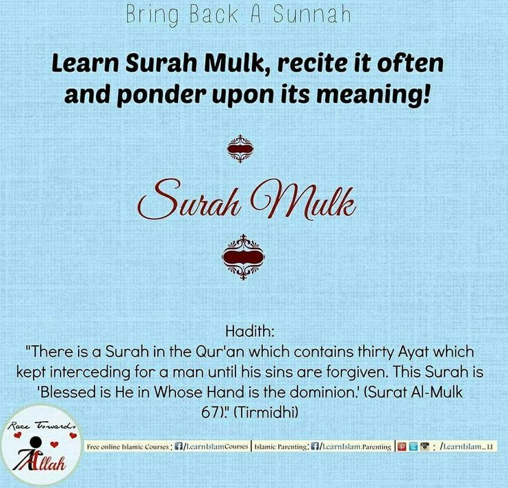 We should try and make our children memorize it and recite it every night. Or atleast play the recitation and listen to it.   #surah #quran #surahmulk #recite #sins #forgiven #memorize #sunnah #revive #hadeeth #Hadith #learnislam