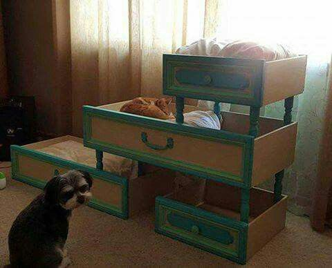 Multi-level pet beds from old drawers.