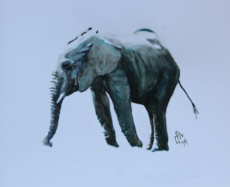 Another Kruger elephant.