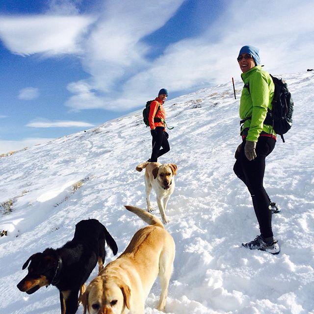 Top 5 dog-friendly winter hikes near Denver