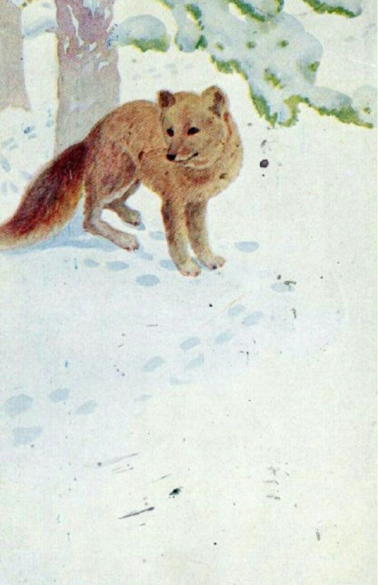 Julekort THOROLF HOLMBOE. Rev i snøen brukt 1924