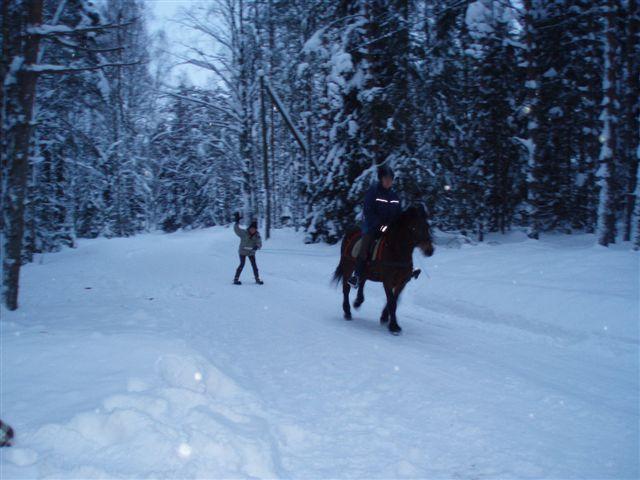 18. joulukalenterin luukussa iloitaan lumesta ja hevosajelusta. Kuva: Ulla Becker