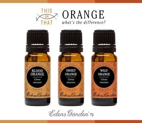 This or That: Orange, Orange and More Orange! – Edens Garden