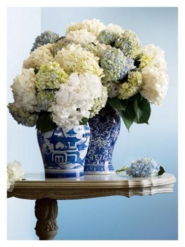 Hydrangeas and blue china vases Live a luscious life with LUSCIOUS: www.myLusciousLife.com