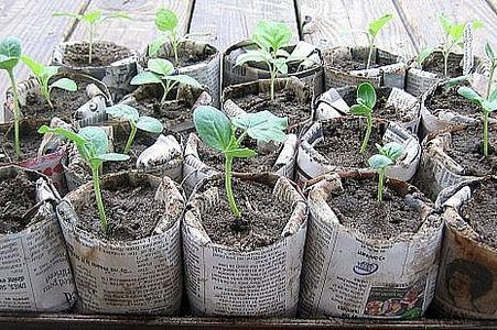 How to Make Sturdy Recycled Newspaper Pots