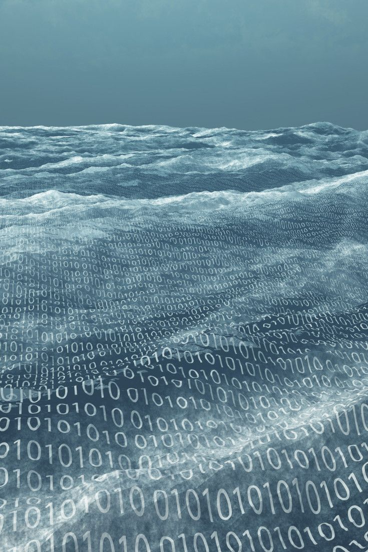 Der digitale Tsunami - Die zerstörerische Kraft elektronischer Geschäftsprozesse und -modelle