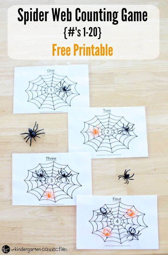Spider Web Counting Game