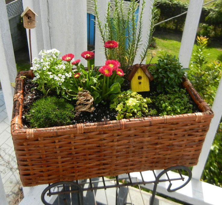 10 Creative Vegetable Garden Ideas: 115 Best Creative Container Gardens Images On Pinterest