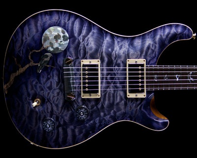 Paul Reed Smith Prs Private Stock 2540 Custom 22 Raven