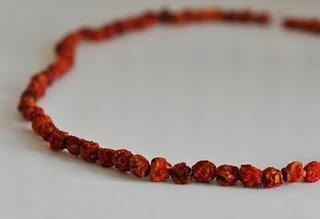 rowan-berry necklace