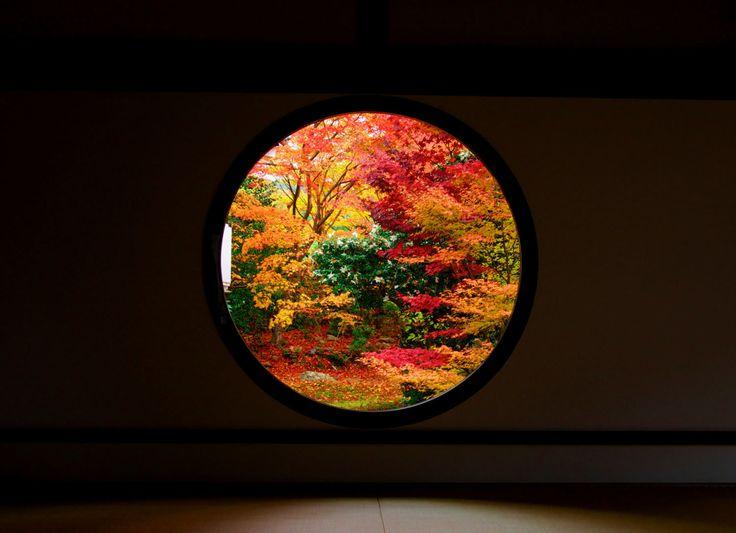窓から覗く魅惑の絶景。アートフレームのような「額縁紅葉」が美しすぎる - Find Travel