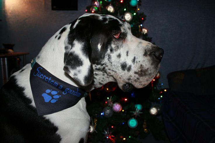 Egyedi kendő a karácsonyfa alá