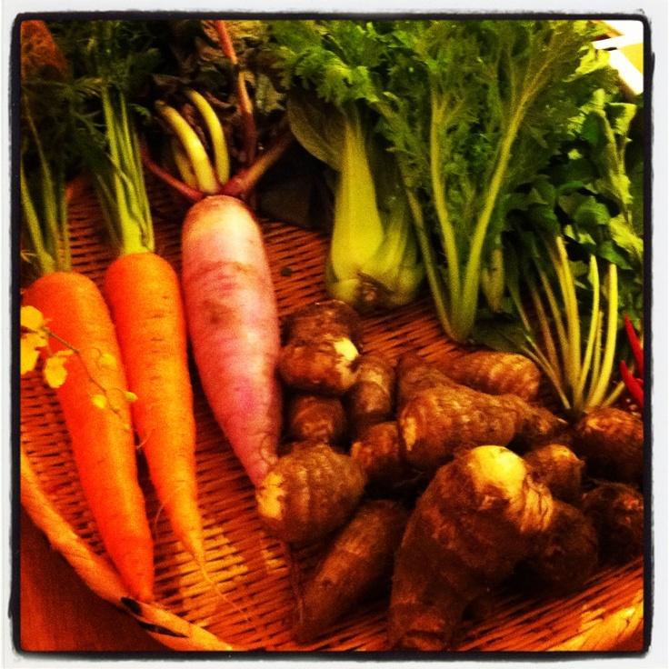 Fresh Vegetables @Yamagata Girls Farm.
